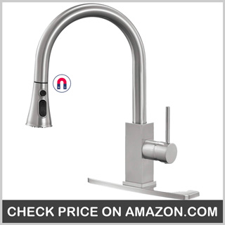 Wasserrhythm Kitchen Faucet with Pull-down Sprayer Brushed Nickel